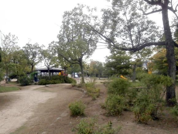 花と樹の広場
