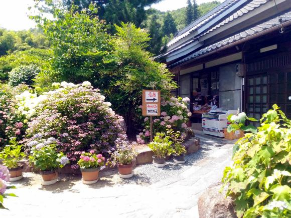 神宮寺の境内