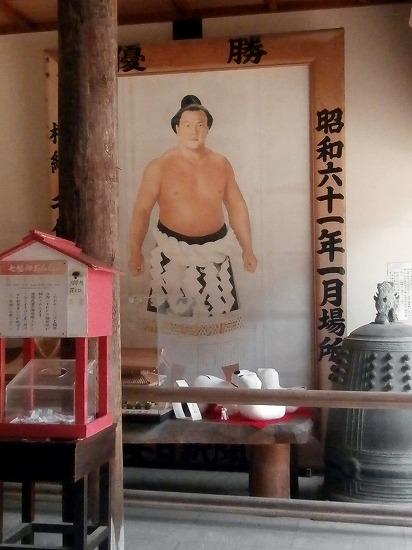 千代の富士の絵