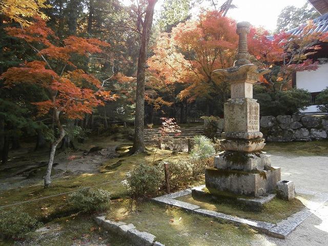 仏殿前の庭